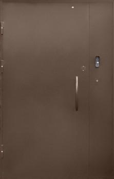 дверь_в_подъезд (2)