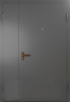 Дверь техническая (10)